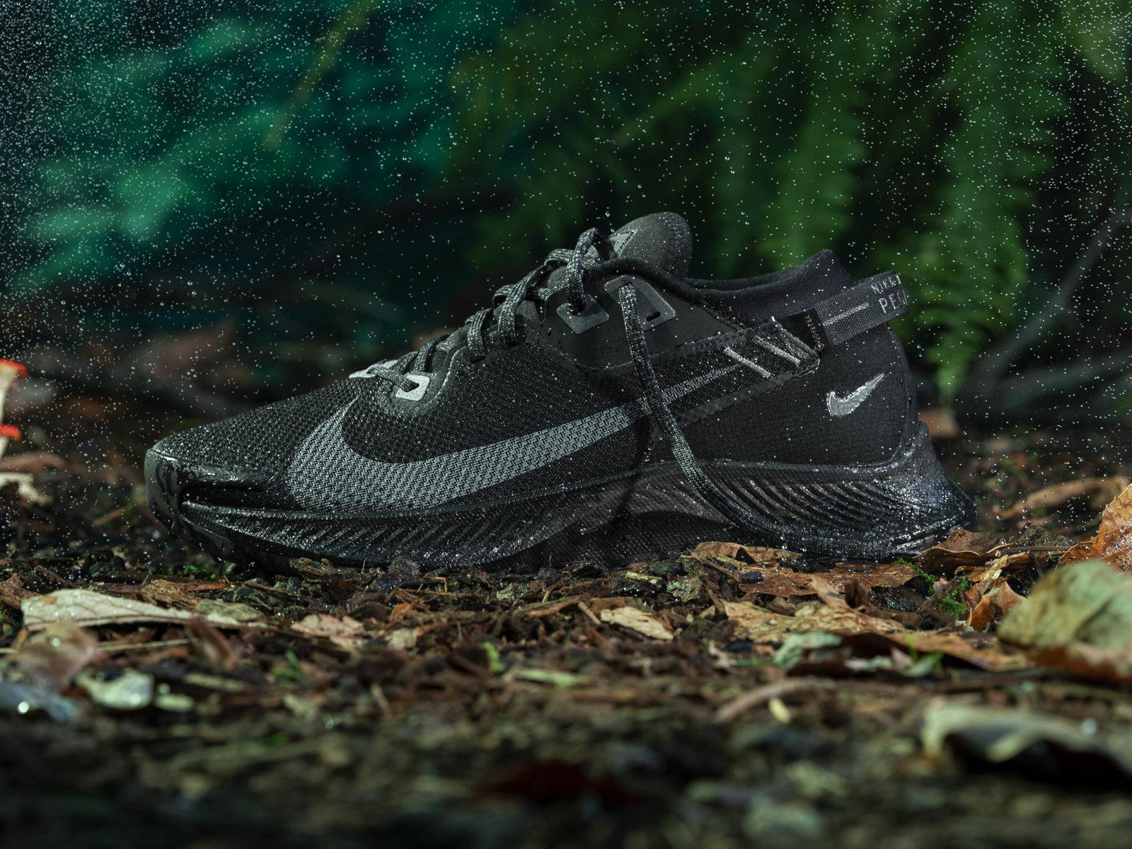 Nike Pegasus Trail 2 Gore-Tex Runaway Milano